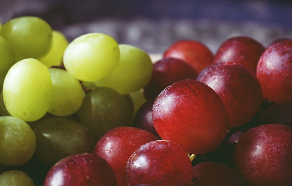 PEF for Winemaking
